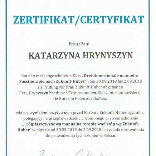 Trójpłaszczyznowa manualna terapia stóp na podstawach neurofizjologicznych wg Barbary Zukunft-Huber 10-13.12.2020